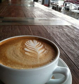 Looking for Premium, Fair Trade Coffee? Bird Rock is a Must.